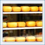conservazione-formaggi